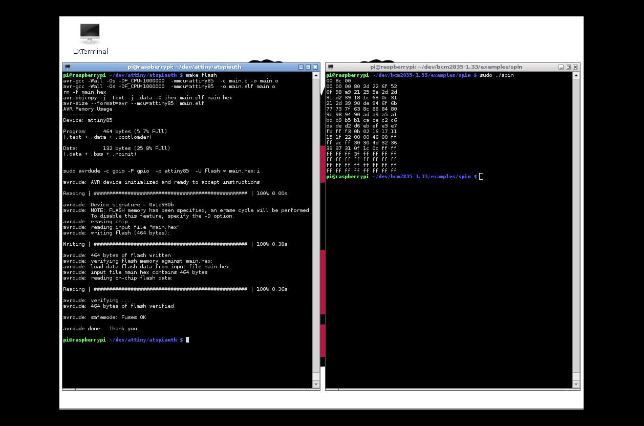 Screenshot of pi's X desktop